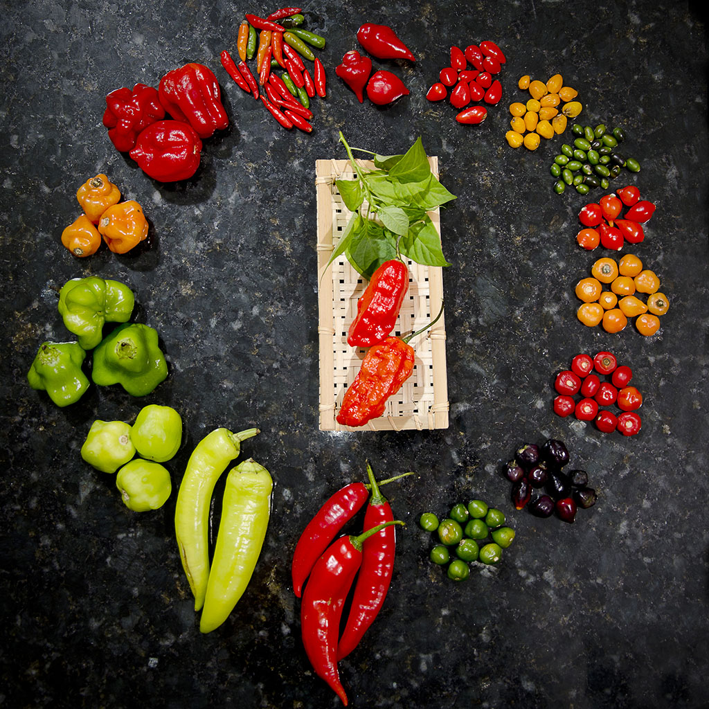 Fotografia de pimentas por Angelo Avila